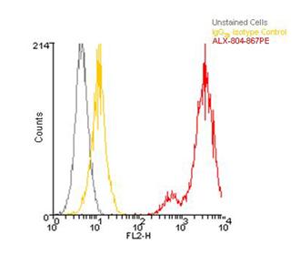 LRRC32 monoclonal antibody (Plato-1) (PE conjugate) Flow Cytometry