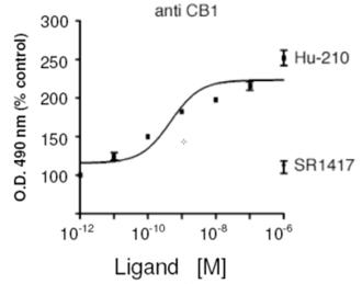 Cannabinoid receptor CB1 polyclonal antibody Membrane ELISA