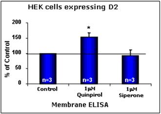 Dopamine receptor D2 polyclonal antibody Cellular ELISA