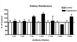 Angiotensin II receptor AT2 polyclonal antibody Membrane ELISA