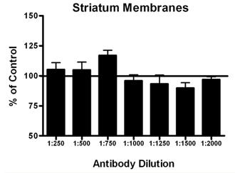 Adrenergic receptor α1b polyclonal antibody Membrane ELISA