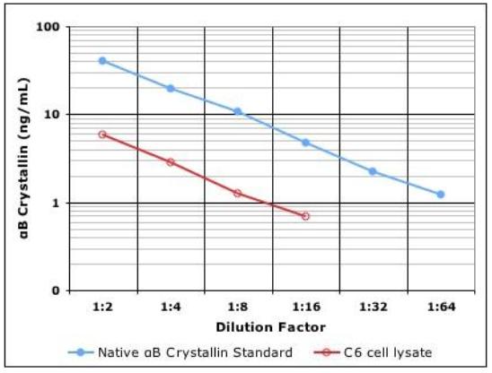 IMMUNOSET® αB-Crystallin ELISA development set image