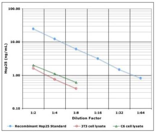 IMMUNOSET® HSP25 (rodent), ELISA development set image
