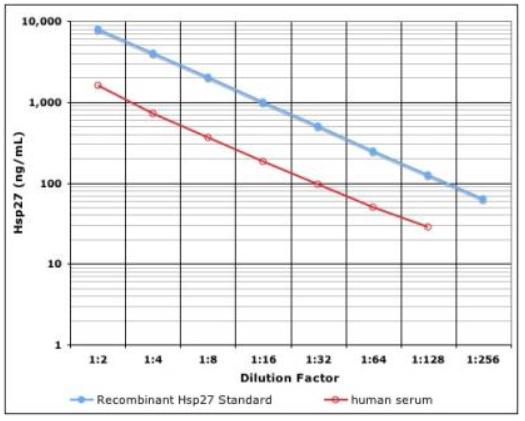 IMMUNOSET® HSP27 high sensitivity (human), ELISA development set image