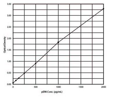 [pThr202/Tyr204]Erk1/2 ELISA kit Standard curve