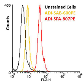 Mouse IgG1 isotype control, monoclonal antibody (MOPC-21) (PE conjugate) Flow Cytometry