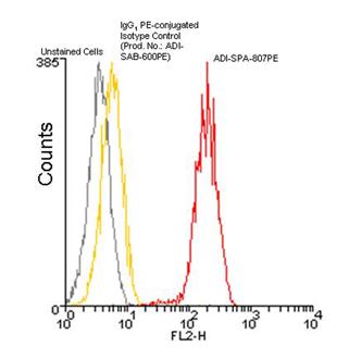 HSP60 monoclonal antibody (LK-2) (PE conjugate) Flow Cytometry