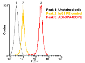 HSP90 monoclonal antibody (AC88) (PE conjugate) Flow Cytometry