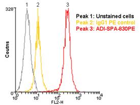 HSP90 monoclonal antibody (AC88) (PE conjugate) Flow Cytometry