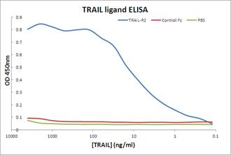 TRAIL-R2 (human):Fc (human), (recombinant) ELISA