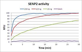 SENP2 (catalytic domain) (human), (recombinant) (GST-tag) activity
