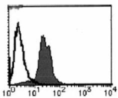 Cyclin D1 monoclonal antibody (5D4) Flow Cytometry