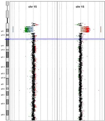 CYTAG® CGH Labeling kit image