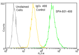 Mouse IgG1 isotype control, monoclonal antibody (MOPC-21) (DyLight™ 488 conjugate) Flow Cytometry