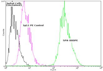HSP27 monoclonal antibody (G3.1) (PE conjugate) Flow Cytometry