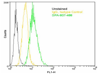 HSP60 monoclonal antibody (LK-2) (DyLight™ 488 conjugate) Flow Cytometry
