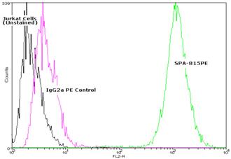 HSC70/HSP73 monoclonal antibody (1B5) (PE conjugate) Flow Cytometry