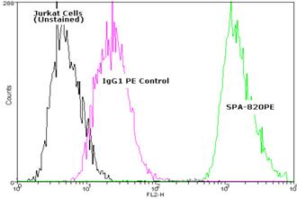 HSC70/HSP70 monoclonal antibody (N27F3-4) (PE conjugate) Flow Cytometry