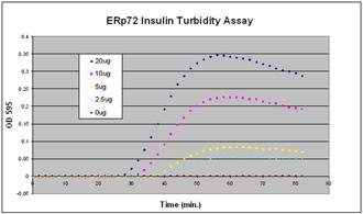 ERp72 (human), (recombinant) (His-tag) Activity assay