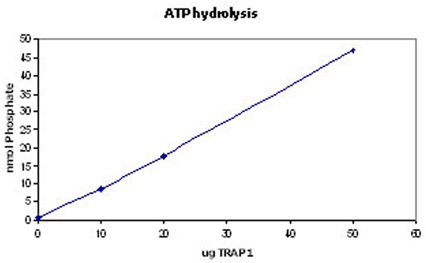 SPP-848 ATPase