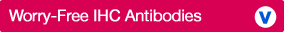 IHC Validated Antibodies