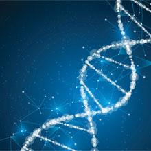 molecular biology technotes enzo life sciences