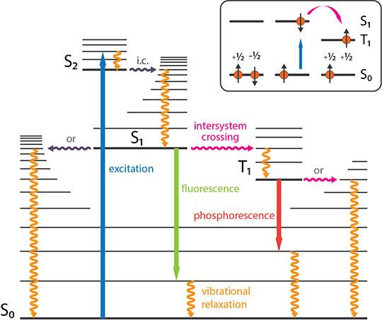 Fluorescence vs. Phosphorescencea