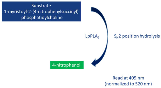lipoprotein-associated phospholipase A2 Assay