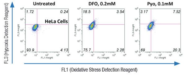 flow cytometry enzo life sciences