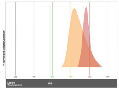 emission spectral overlap between Alexa Fluor 647 and Propidium Iodide