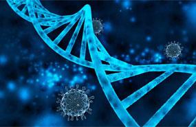 PCR & qPCR